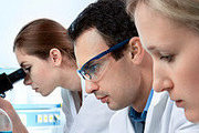 Introduction to Biology Online Certificate Course