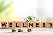 Wellness Programs: EEOC Enforcement Actions and Complying with Federal and State Laws Online Course