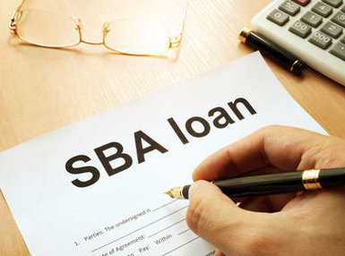 SBA Loan Guarantees:Current Purchase Issues and Complexities Online Course