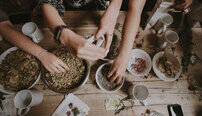 Chinese Medicine Online Certificate Course