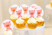 Cupcake Decorating – Animal Pack Online Certificate Course