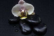 Hot Stone Massage Online Certificate Course