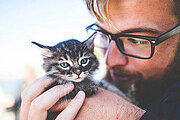 Complete Animal Care Online Bundle, 4 Courses