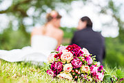The Ultimate Professional Wedding Planning Course