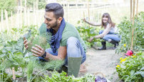Starting A Vegetable Garden Online Certificate Course