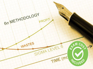 Lean Six Sigma Yellow Belt (Exam Cost Included) Online Certificate Course