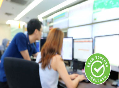 ITIL Capability Expert (Vouchers Included) Online Certificate Course