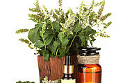 Certificate in Naturopathy Online Course
