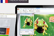 Microsoft PowerPoint 2010 Interactive Training Programme (French) Online Certificate Course