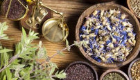 Advanced Master Herbalist Online Diploma Course