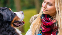 Canine Behaviour Training Online Diploma Course