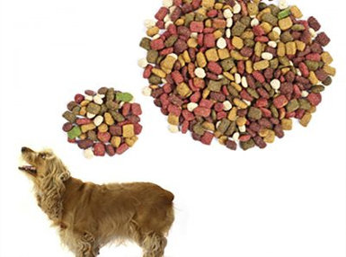 Certificate in Canine Nutrition Online Course