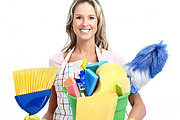 Cleaning Business Online Diploma Course