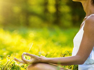Certificate in Meditation Online Course