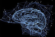 Diploma In Neuropsychology Online Course