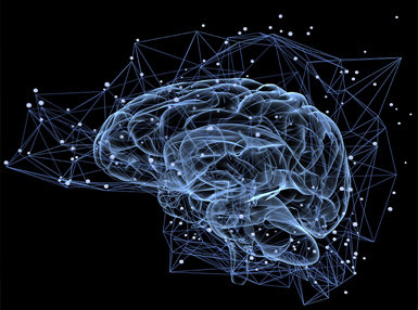 Neuropsychology Online Certificate Course