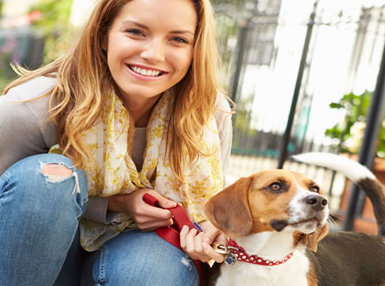 International Pet Sitting Online Diploma Course