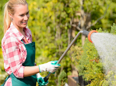 The Complete Gardening Online Bundle, 3 Courses