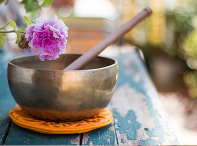 Ultimate Holistic Therapy Business Online Bundle, 10 Certificate Courses