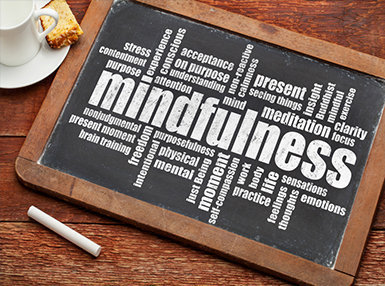 Ultimate Mindfulness Online Bundle, 10 Certificate Courses