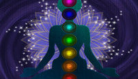 Chakra and Aura Healing Online Bundle, 5 Certificate Courses