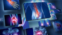 Anatomy and Physiology Online Bundle, 3 Certificate Courses