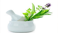 Ultimate Homeopathy Online Bundle, 10 Certificate Courses