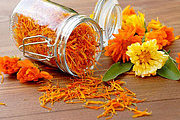 Flower and Vibrational Essences Practitioner Online Bundle, 2 Certificate Courses