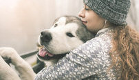 Animal Assisted Therapy Online Bundle, 2 Certificate Courses