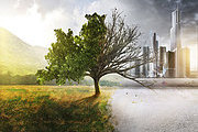 Environmental Aspects and Impacts Online Bundle, 5 Certificate Courses