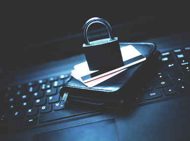 Ultimate Identity Theft Online Bundle, 10 Certificate Courses