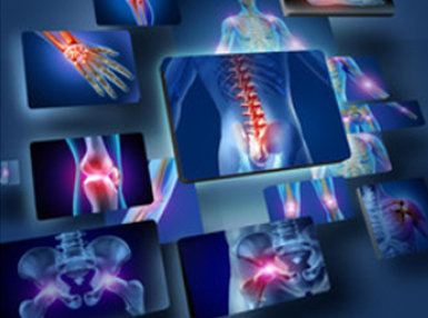 Anatomy and Physiology - Advanced Online Bundle, 3 Certificate Courses