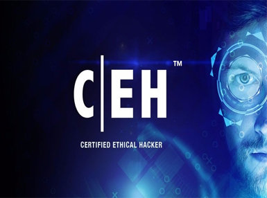 Certificate In EC Council Certified Ethical Hacker Certification Online Course