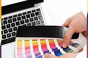 Certificate In Become a Professional Graphic Designer Online Course