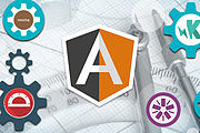 Professional Angular Developer Online Bundle, 5 Courses