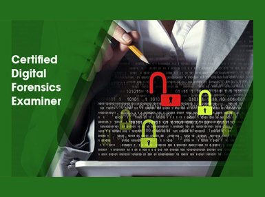 Certificate In Certified Digital Forensics Examiner Online Course