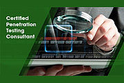 Certified Penetration Testing Consultant Online Course