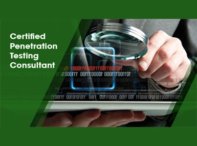 Certified Penetration Testing Consultant Online Certificate Course