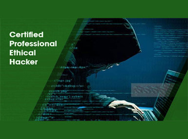 Certified Professional Ethical Hacker Online Certificate Course