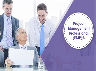 Certificate In Project Management Professional (PMP)® Exam Prep - Sixth Ed. Online Course