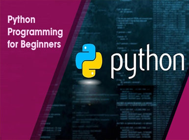 Python Programming for Beginners Online Certificate Course