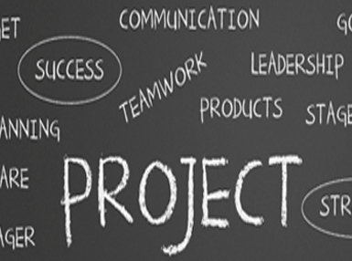Certificate In Project Management Applications Self Paced